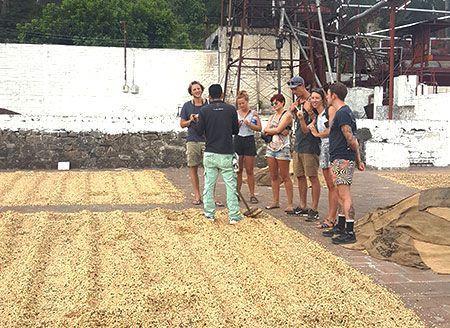 coffe-tour-el-salvador-taste-a-gourmet-cup-of-coffee-in-ataco-ahucahapan-el-salvador